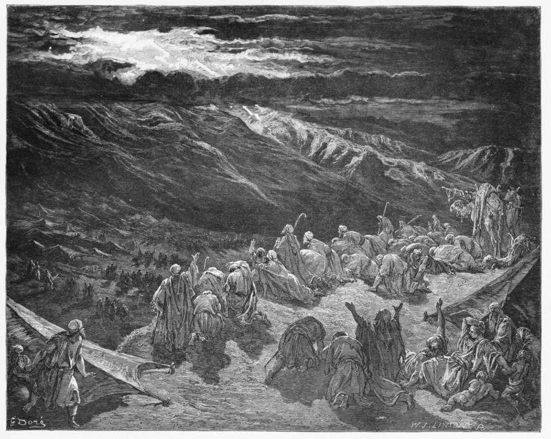 Mt Sinai Crowd
